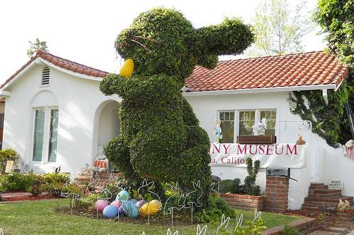 10. Kaninchen-Museum